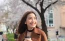 GO-VIET nói gì vụ tài xế đánh diễn viên Kim Nhã ngất xỉu?