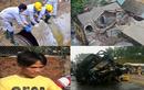 10 sự kiện nóng hầm hập dư luận VN trong tuần (82)