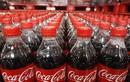 Ông lớn Coca Cola Việt Nam đã chịu đóng thuế