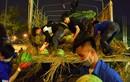 Ảnh: Sinh viên vay tiền mua 20 tấn dưa hấu giúp nông dân Quảng Ngãi