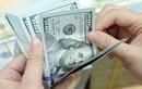 Tỷ giá USD hôm nay 12/3: Đồng USD đang phục hồi