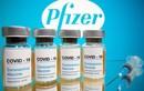 Pfizer và BioNTech đệ trình sớm được cấp phép sử dụng vaccine cho trẻ 5 -11 tuổi