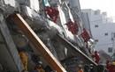 Bắt chủ đầu tư tòa nhà bị sập vì động đất ở Đài Loan