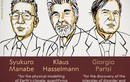 Hành trình nghiên cứu của 3 nhà khoa học đoạt giải Nobel Vật lý 2021