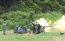 Báo Nga nhắc tới khẩu pháo ZiS-3 của Hải quân đánh bộ Việt Nam