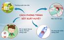 Sốt xuất huyết ở Hà Nội: Làm gì để phòng bệnh?