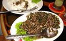 Đặc sản thịt bò xào kiến đỏ có một không hai của Campuchia