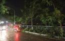 Bão số 2 vào Việt Nam, Hà Nội mưa lớn cây đổ đè người đi đường