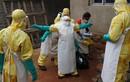 Vì sao đại dịch Ebola khiến cả thế giới chao đảo khiếp sợ?