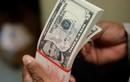 Tỷ giá ngoại tệ ngày 21/3: Vượt ảnh hưởng của vàng, USD tăng mạnh