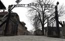 """Cảnh tượng khủng khiếp bên trong """"chốn địa ngục"""" của phát xít Đức"""