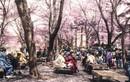 """Bộ ảnh hiếm Nhật Bản, Trung Quốc hơn 200 năm trước được """"tô màu"""""""