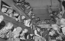 Sự thật hãi hùng về trại tập trung đầu tiên của Hitler