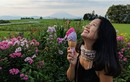 Hành trình cực ấn tượng của cô gái Việt đến Mỹ làm giám đốc