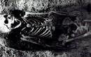 Bí ẩn hài cốt cô gái 300 tuổi có chim sẻ trong miệng