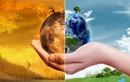 Năm 2050, loài người có thể biến mất khỏi Trái đất vì điều này?