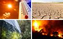 Cực sốc tiên tri song trùng về thảm họa khủng khiếp năm 2022