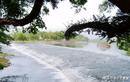 Tần Thủy Hoàng cả gan làm gì để xây kênh đào kỳ vĩ nhất TQ?