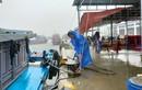Quảng Nam khẩn trương ứng phó bão số 5