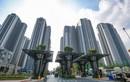 TNS Holdings chào bán 1,9 triệu cổ phiếu giá thấp hơn 68% thị giá