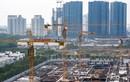 Xây dựng SCG lên sàn UPCoM với định giá hơn 1.000 tỷ đồng