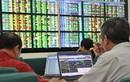 Nhiều cá nhân bị xử phạt vì vi phạm công bố thông tin về giao dịch cổ phiếu