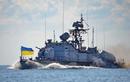 Ukraine muốn xây dựng hạm đội hải quân giống Iran để chống Nga