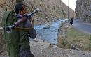 Taliban mất 250 quân 1 đêm, ngông cuồng tuyên bố đã chiếm được Panjshir