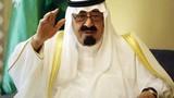 Saudi Arabia, UAE  đứng sau cuộc đảo chính ở Ai Cập?
