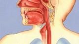 Phòng giãn tĩnh mạch thực quản