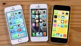 """iPhone 6, 5S sắp :tuyệt chủng"""" tại Việt Nam"""