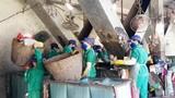 Đột nhập nhà máy xử lý rác khiến Tô Công Lý vướng lao lý