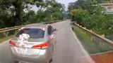 Video: Ôtô phanh gấp tránh con chó lao sang đường suýt bị xe sau đâm phải