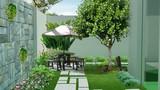 Trồng cây trong sân nhà thế nào cho hợp phong thủy?