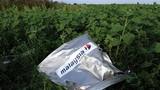 Malaysia: Không có bằng chứng về việc Nga bắn hạ MH17