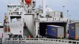 Giải cứu nhiều người nhập cư còn sống khỏi xe tải đông lạnh đến Anh