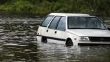 Mỹ đối mặt lũ lụt lịch sử vì bão Sally