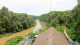 Ảnh: Con đường xuyên rừng tràm đẹp nhất Việt Nam