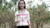 Thiếu nữ 9X mất tích sau tin nhắn lạ, gia đình lo lắng tìm kiếm