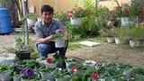 """Thuê đất trồng hoa """"mini"""", kiếm 10 triệu đồng/tháng"""