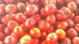 Những thực phẩm có nguy cơ chứa nhiều ấu trùng và độc tố