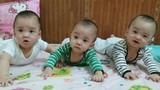 Kỳ diệu ca sinh 3 cùng trứng tại Hà Nội