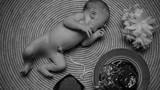 Cảnh báo nguy cơ nhiễm trùng với trào lưu sinh con liên sinh