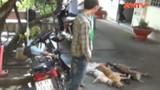 Trộm chó phòng thân bằng ớt bột, hơi cay, súng điện
