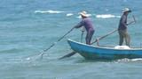 """Quảng Ngãi: Ngư dân đi cào """"lộc biển"""" nửa ngày đã kiếm cả chỉ vàng"""