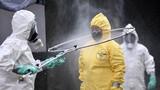 """COVID-19 tới 6 giờ sáng 4/5: Hơn 3.561.000 ca bệnh, đại dịch """"hạ nhiệt"""" tại nhiều nước"""