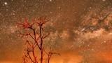 """Ảnh cực hiếm thiên hà Milky Way chìm trong """"biển lửa"""""""