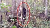 """""""Bắt quả tang"""" những lần quái vật Bigfoot xuất hiện... trêu con người"""