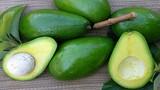 Những thực phẩm siêu tốt nhưng ăn nhiều gây hại gan, hại thận