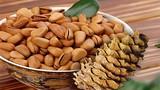 5 công dụng chữa bệnh hay ho của hạt thông